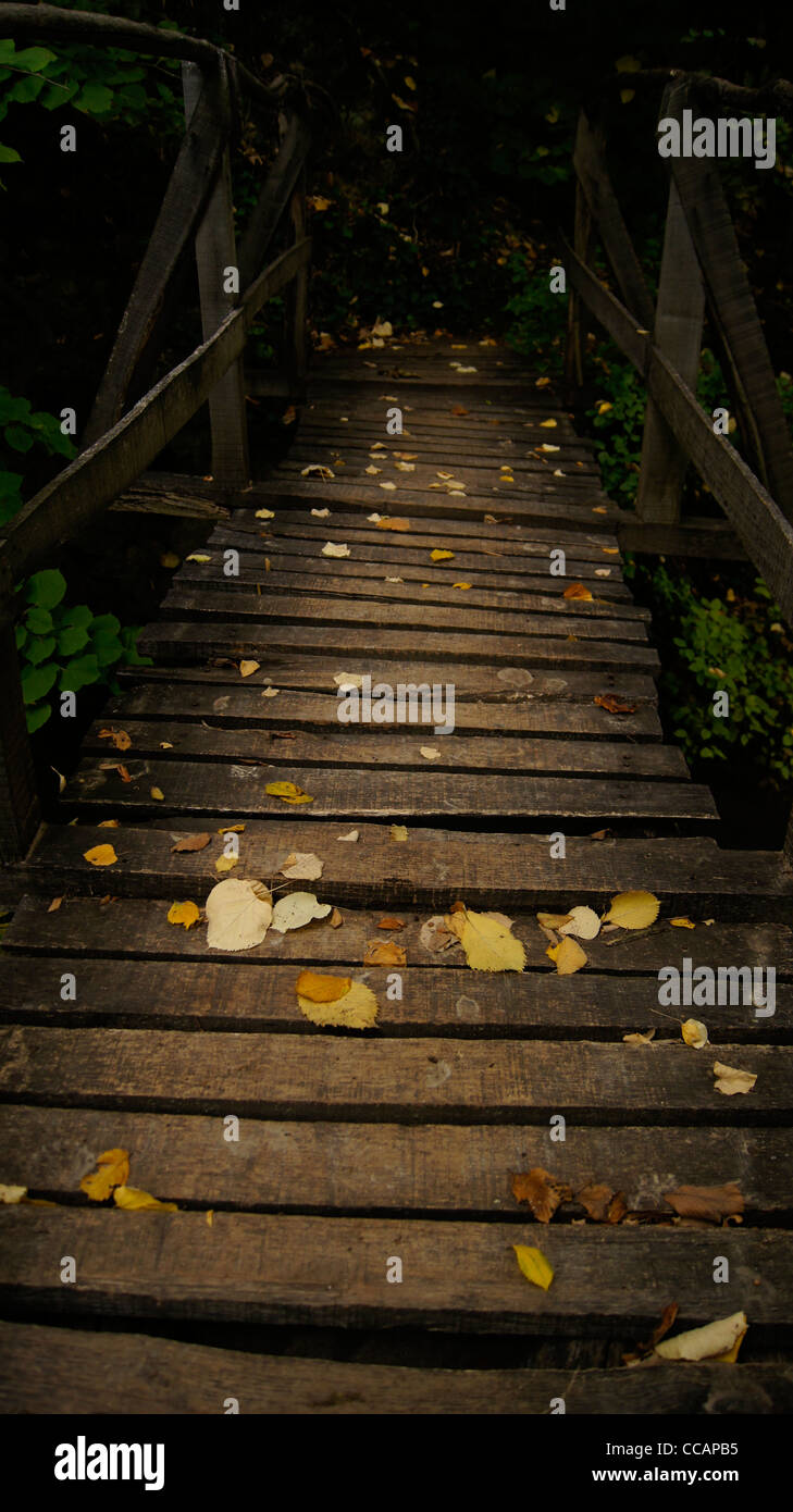 Fallen leaves over a wooden bridge in autumn creating a zen-like atmosphere - Stock Image