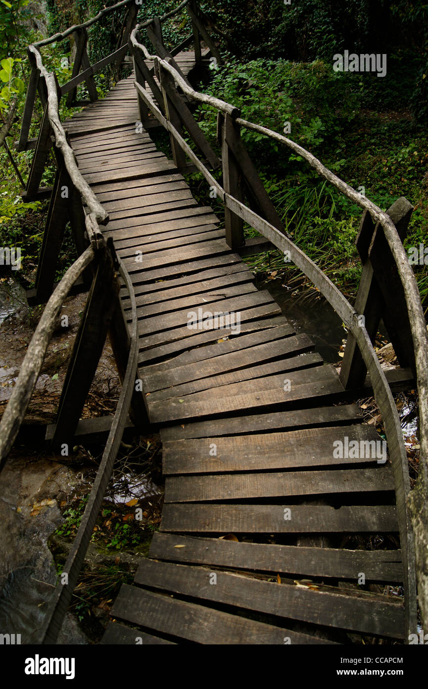 A wooden bridge winding over a stream with lush vegetation - Stock Image