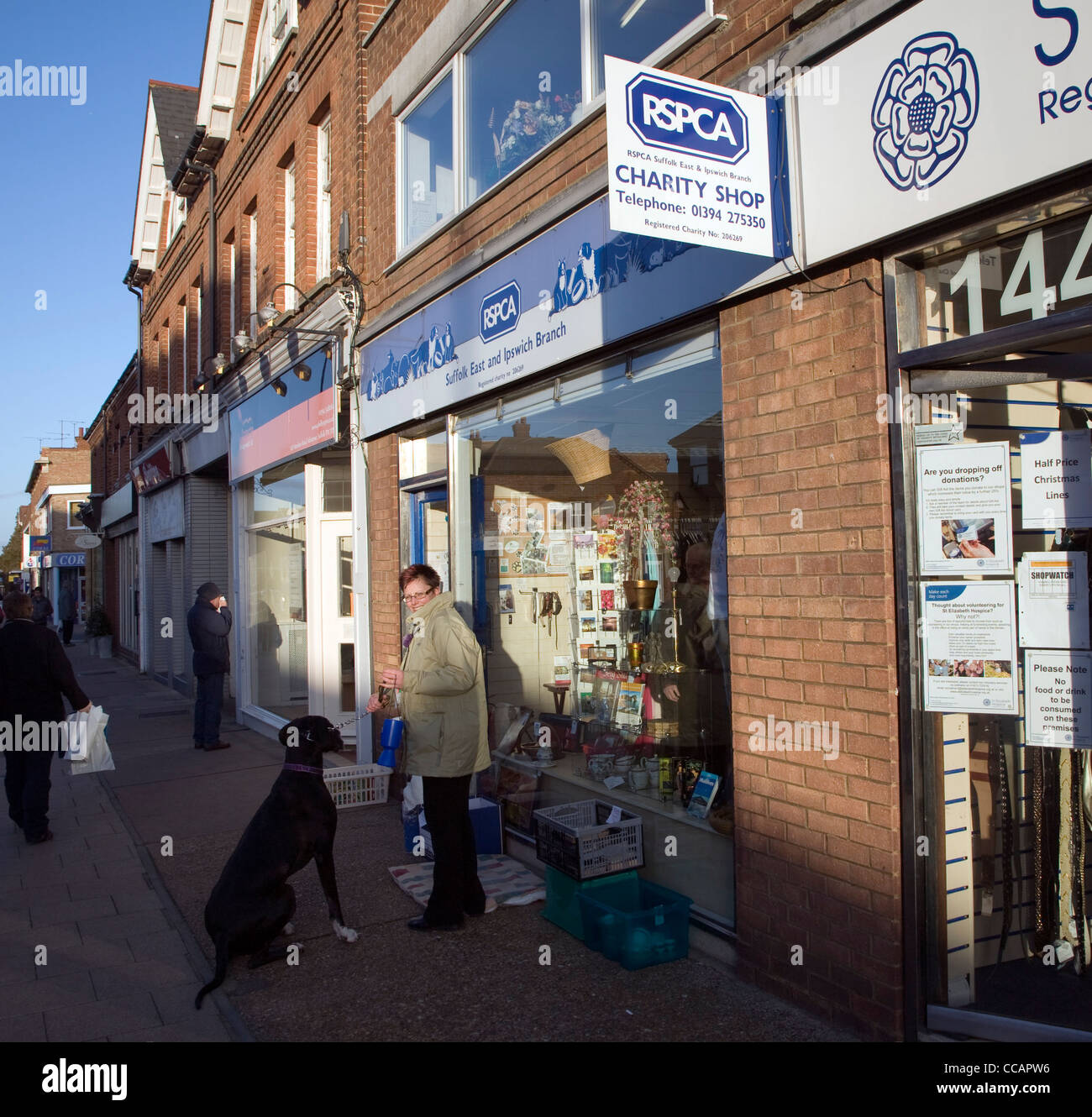 RSPCA charity shop and woman collecting money with dog - Stock Image