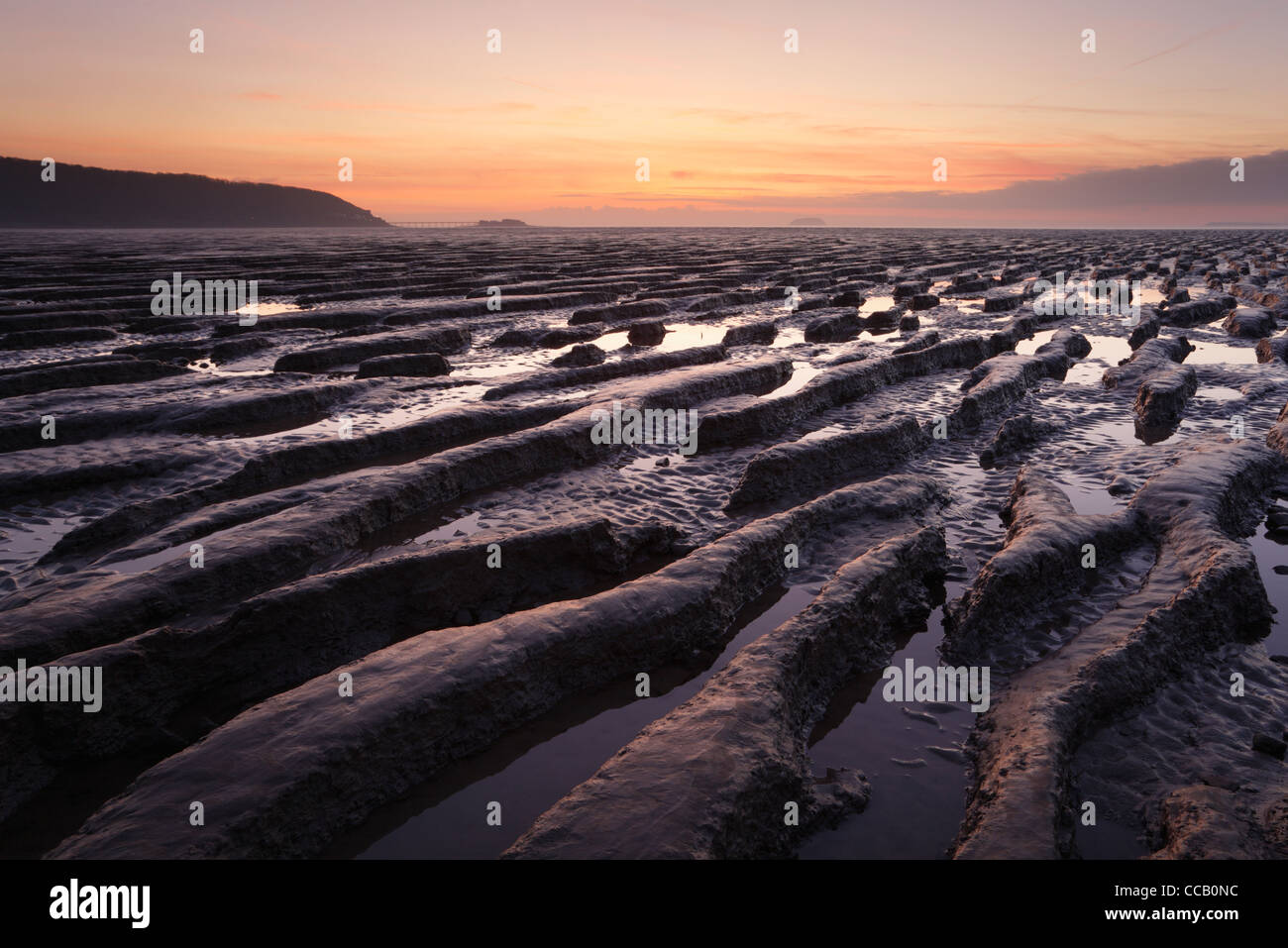 Mudflats at Sand Bay with Birnbeck Pier in the Distance. Weston-super-Mare. Somerset. England. UK. - Stock Image