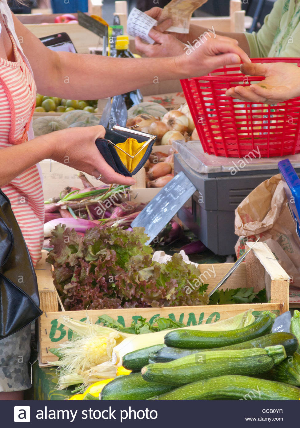 Woman holding coin purse buying vegetables from market - Stock Image