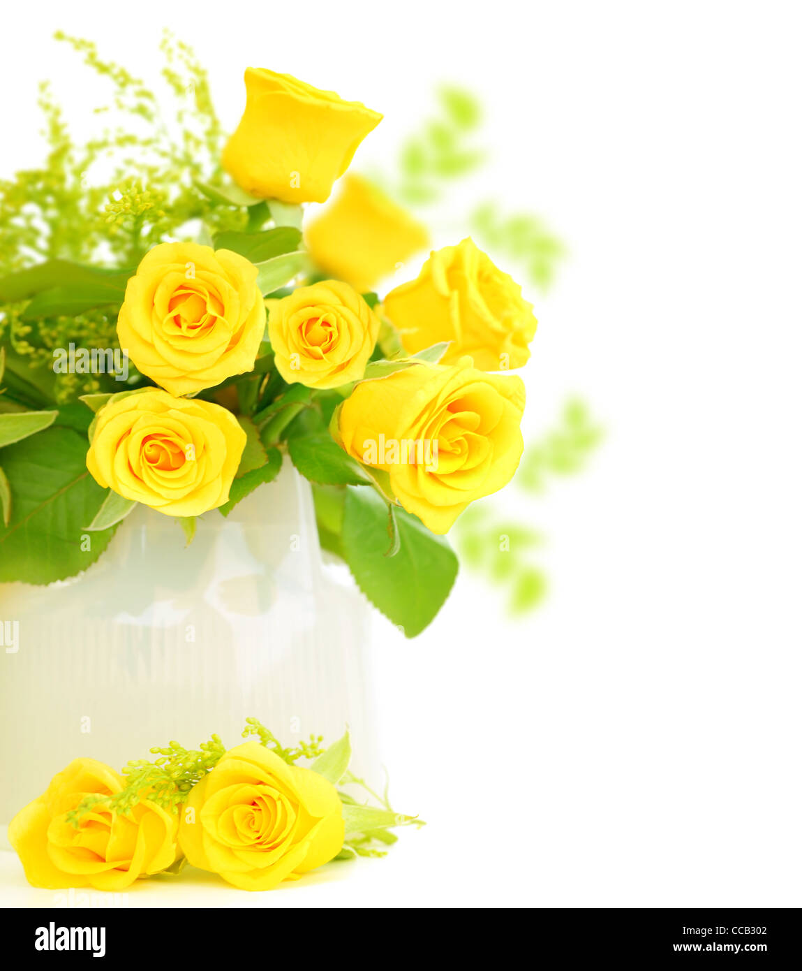 images of white and yellow roses impremedianet