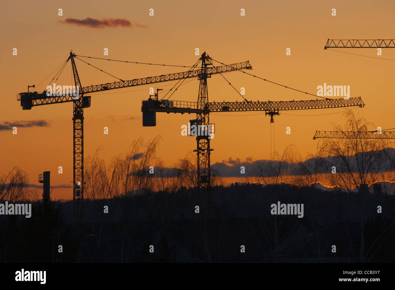 Viele Kräne vor rotem Abendhimmel | a lot of cranes in front of a red evening sky - Stock Image