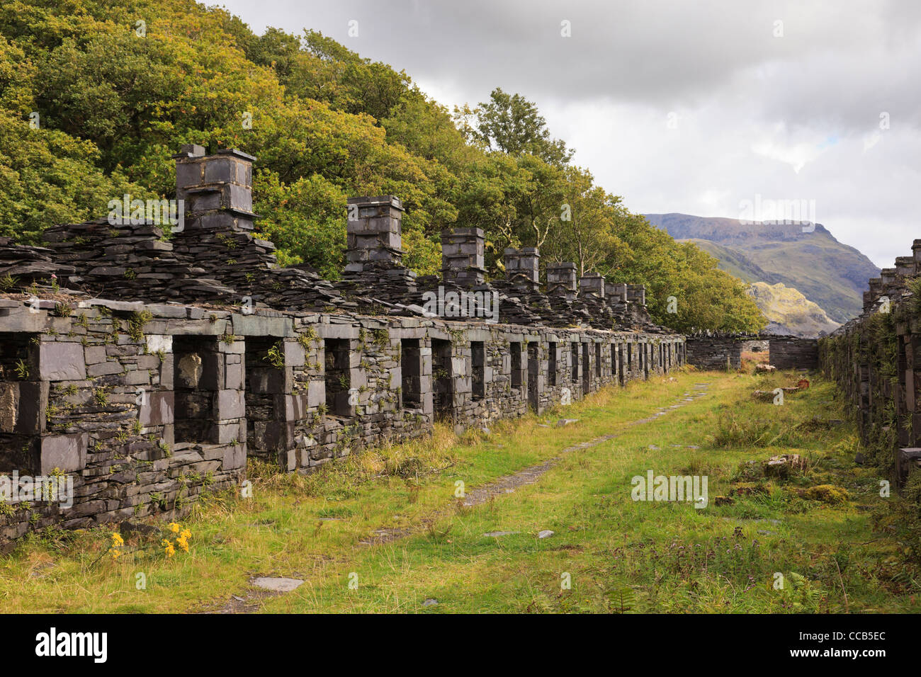 Ruins of old Anglesey Barracks quarrymen's cottages in disused Dinorwig slate quarry on Elidir Fawr in Snowdonia Stock Photo