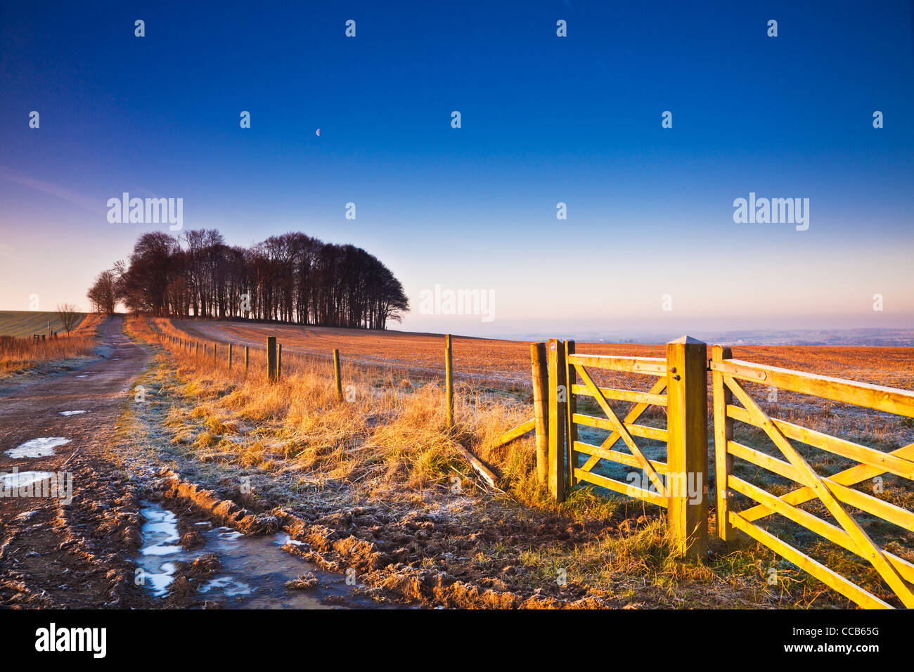 A frosty winter sunrise over the Ridgeway long distance path at Hackpen Hill, Wiltshire, England, UK Stock Photo