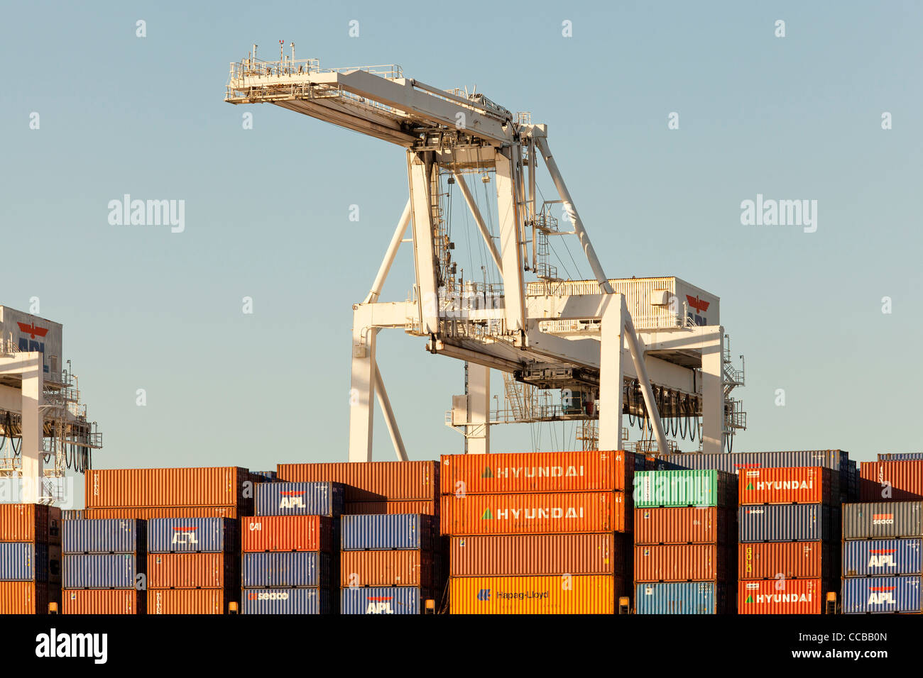Container cranes ready to unload cargo containers from ship at Port of Oakland - California USA - Stock Image