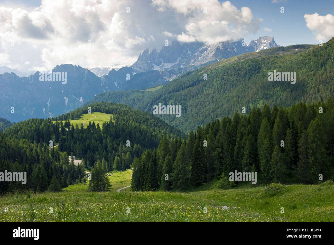 landscape towards fuchiare mountain hut, san pellegrino pass, italy Stock Photo