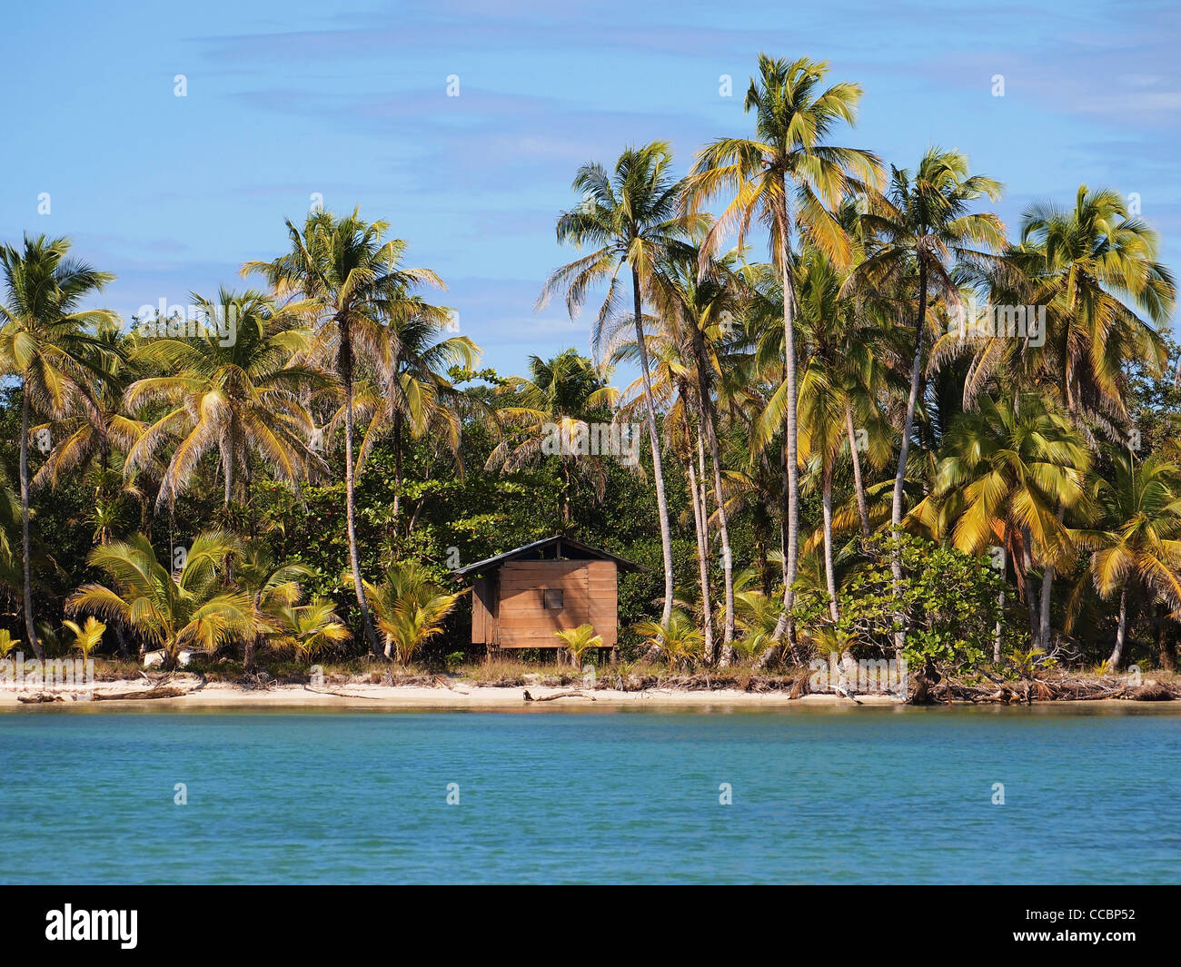 Beautiful palms on tropical beach with a hut, caribbean sea - Stock Image
