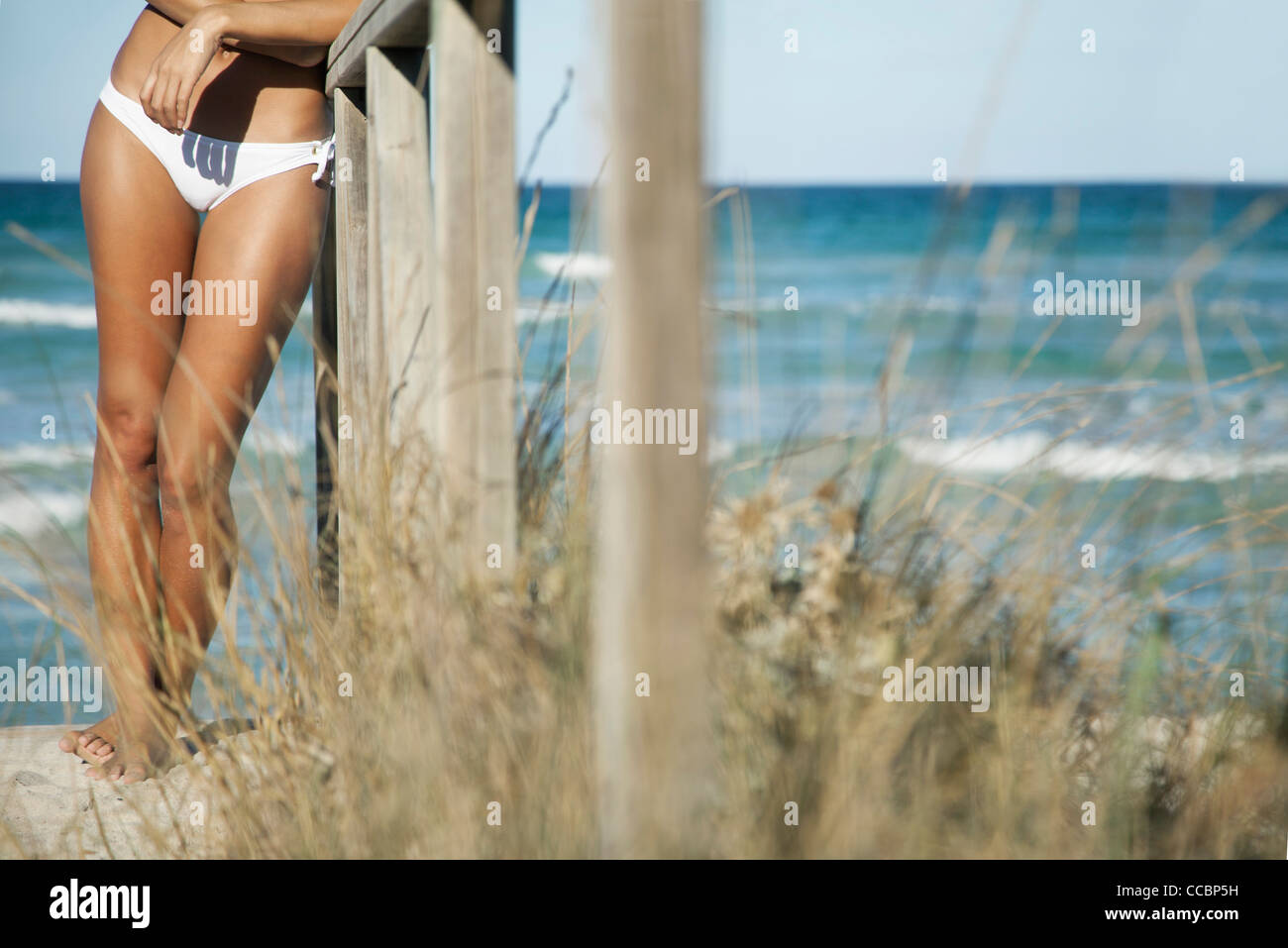 Woman leaning against railing at the beach, cropped - Stock Image
