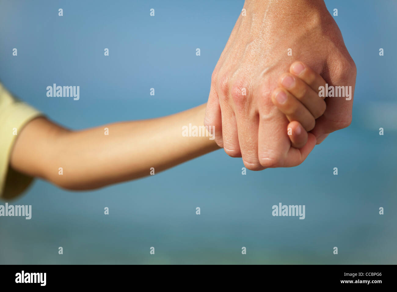 Adult holding child's hand, cropped - Stock Image