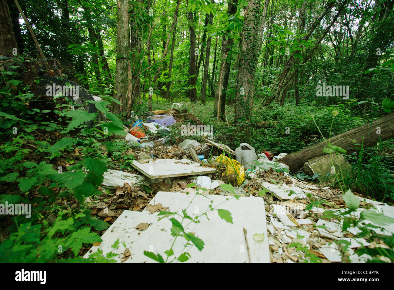 Garbage dumped in woods Stock Photo