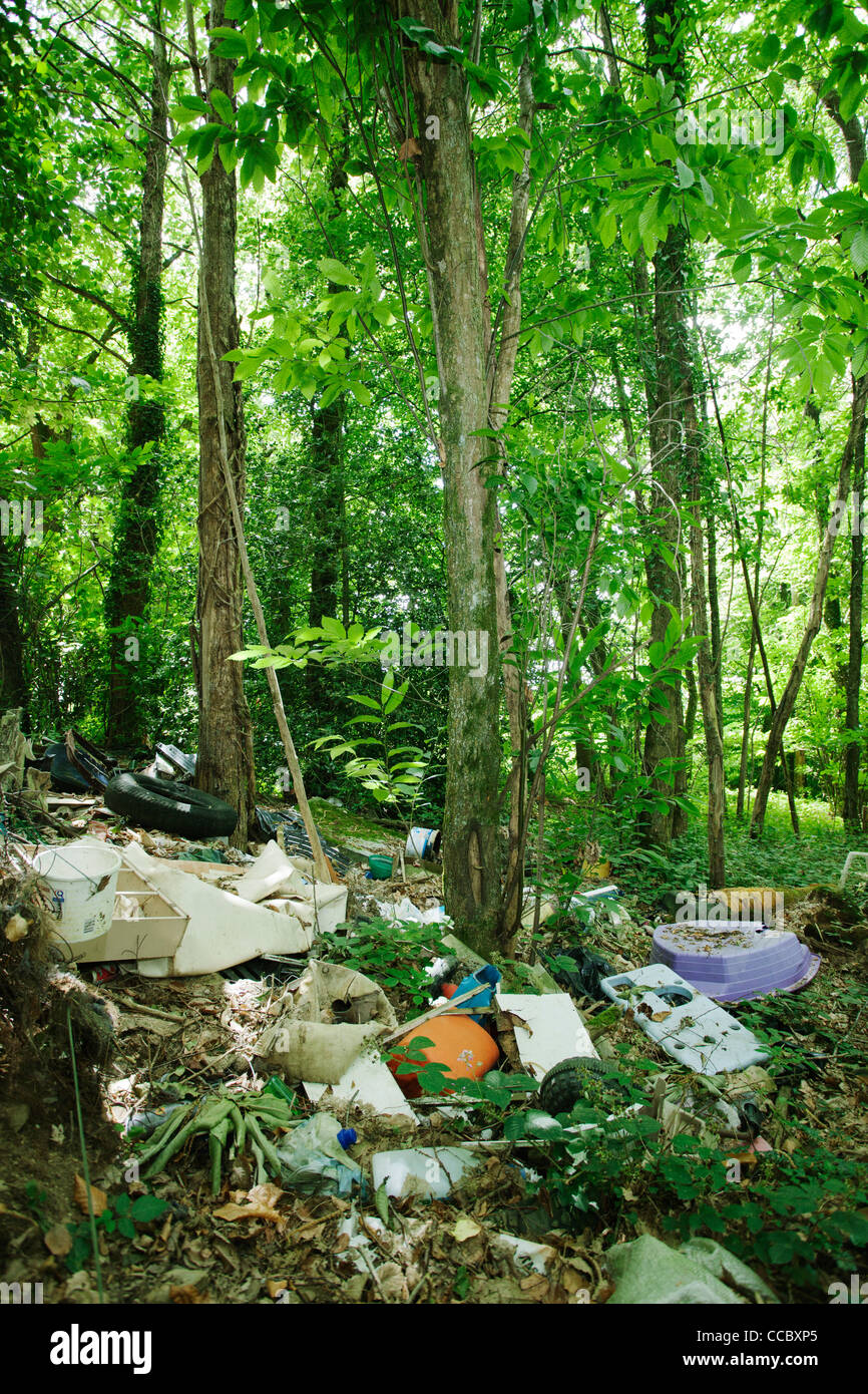 Garbage dumped in woods - Stock Image