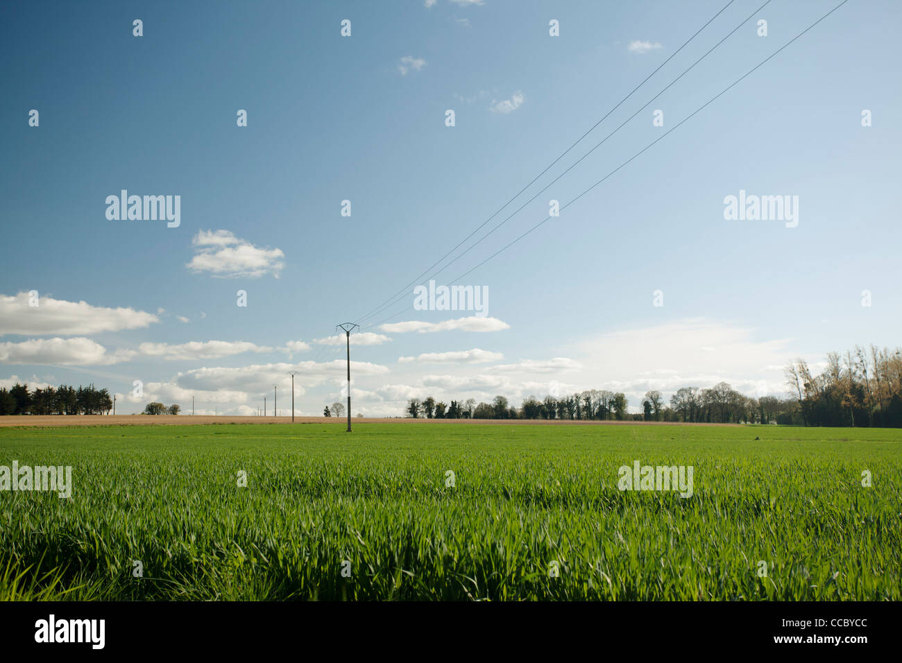 Countryside, Guilliers, Brittany, France - Stock Image