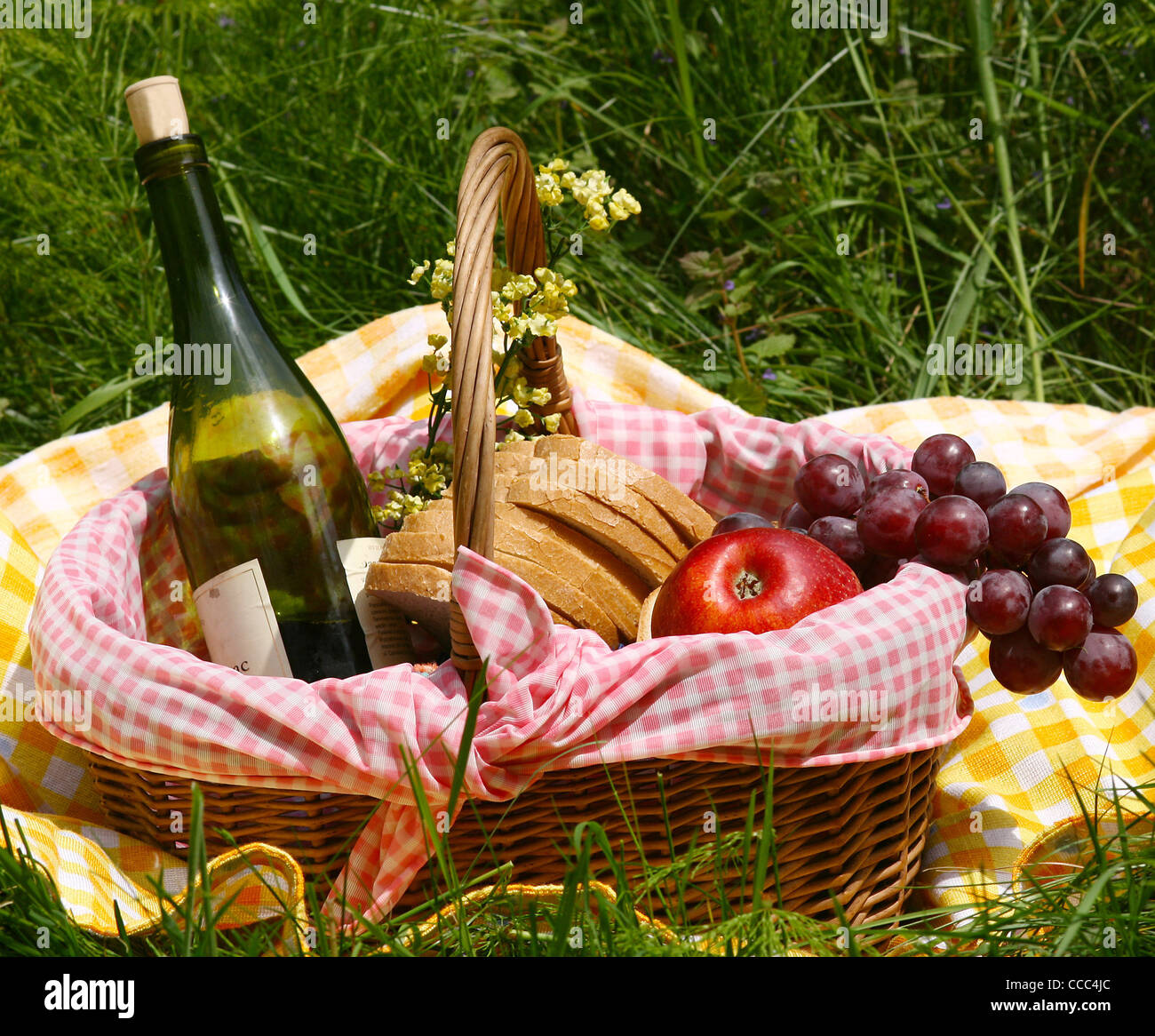 picnic on the grass - Stock Image