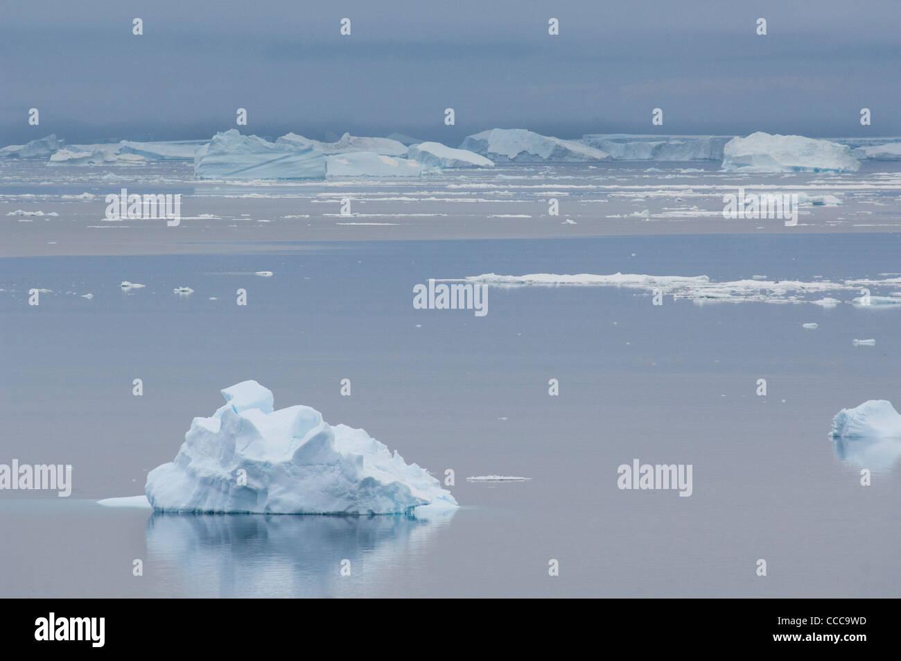 Antarctica, Antarctic Peninsula, Brown Bluff. Iceberg & bergy bits ice waterscape. Stock Photo