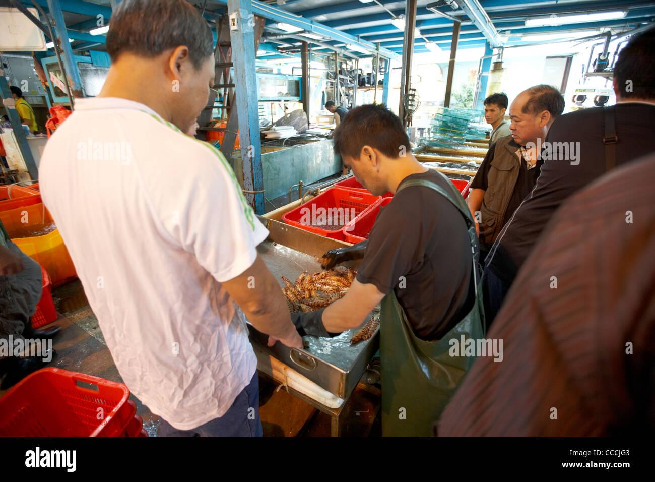 workers sorting and grading striped tiger prawns at aberdeen wholesale fish and seafood market hong kong hksar china - Stock Image