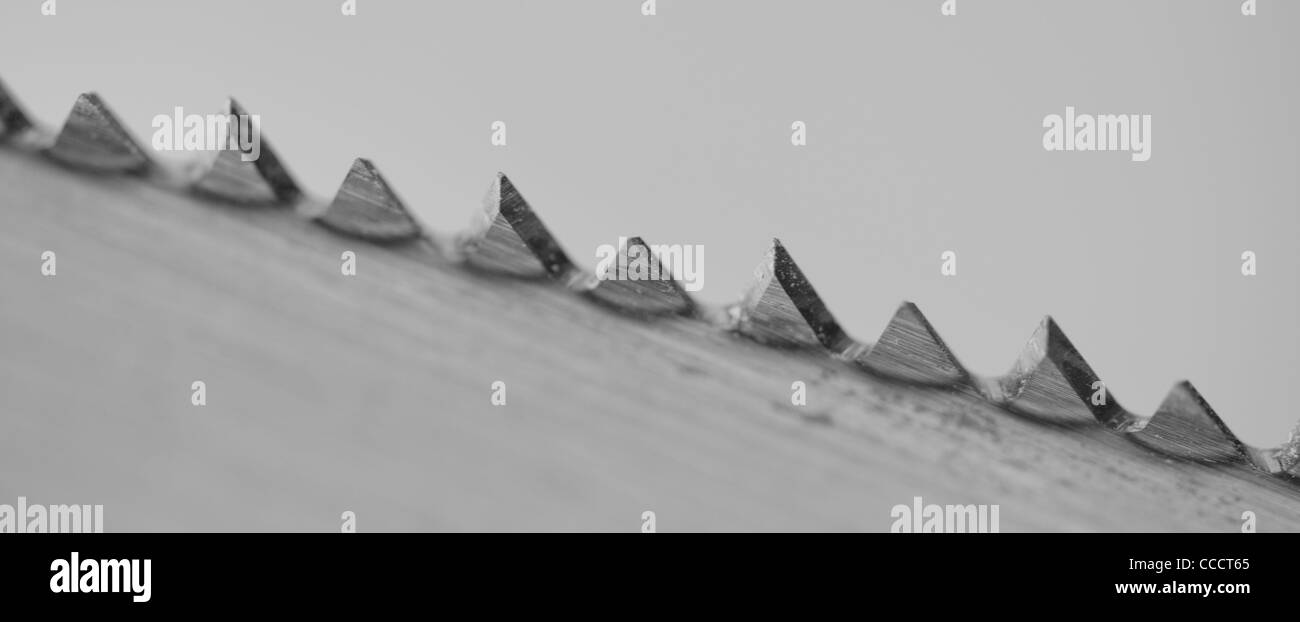 Close up of a saw blade showing the teeth ultra sharp. - Stock Image