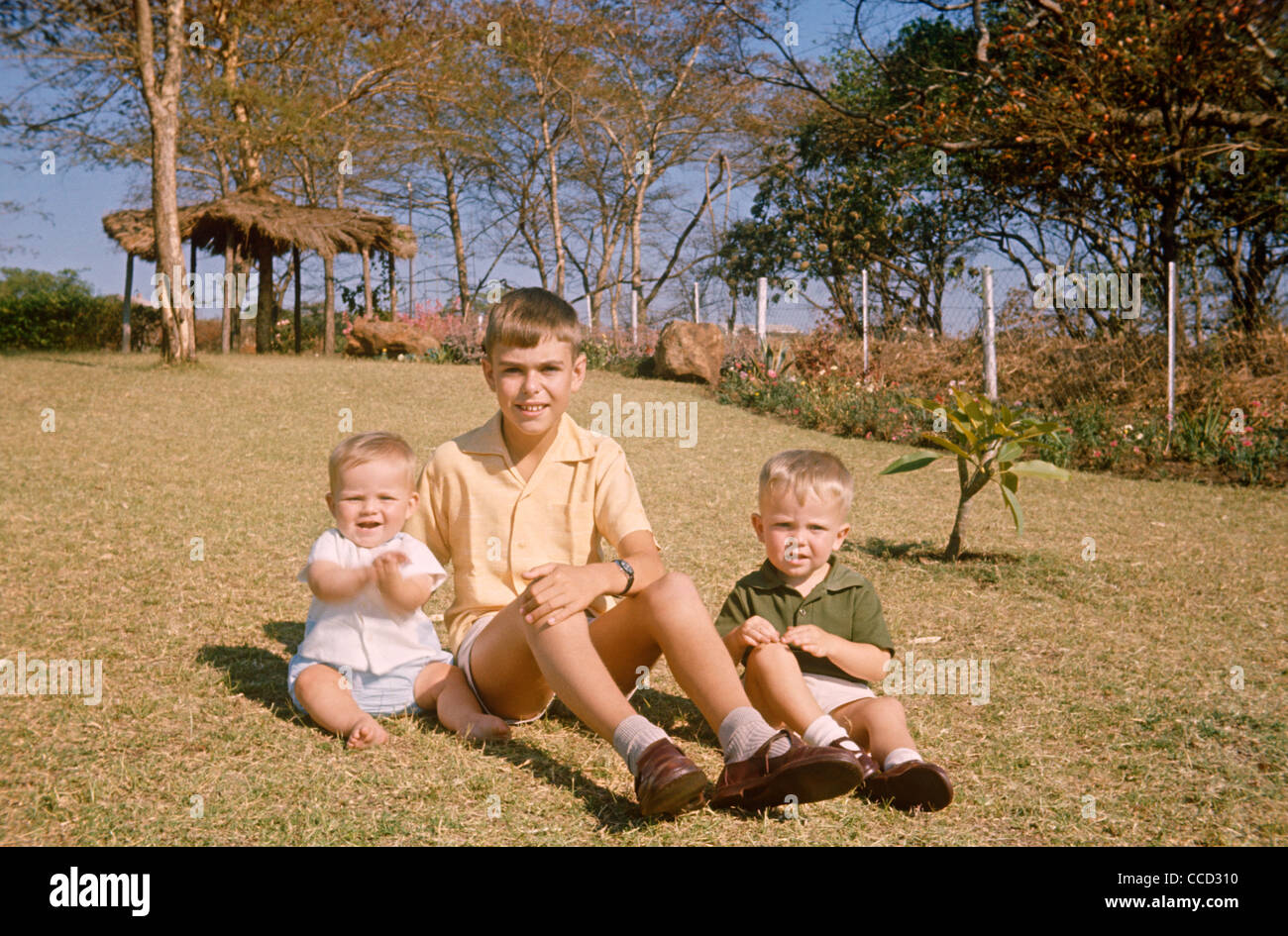 An older uncle with his two nephews sit on tropical grass in the family African garden in 1970. - Stock Image