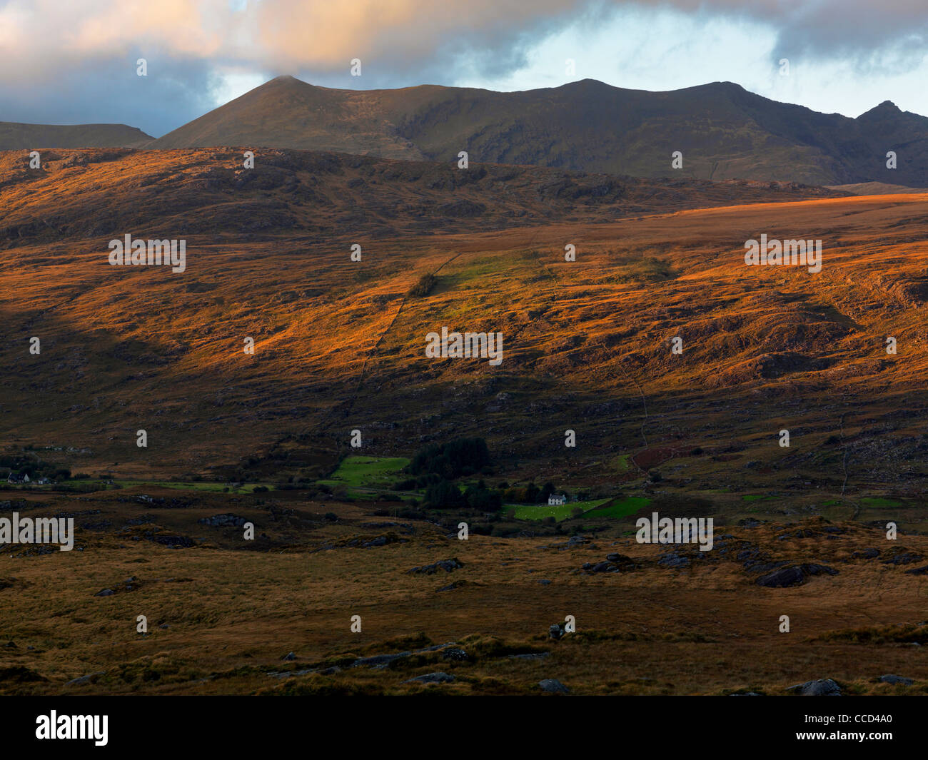 Macgillycudy's Reeks from the Upper Loughs,Killarney, Co. Kerry. - Stock Image