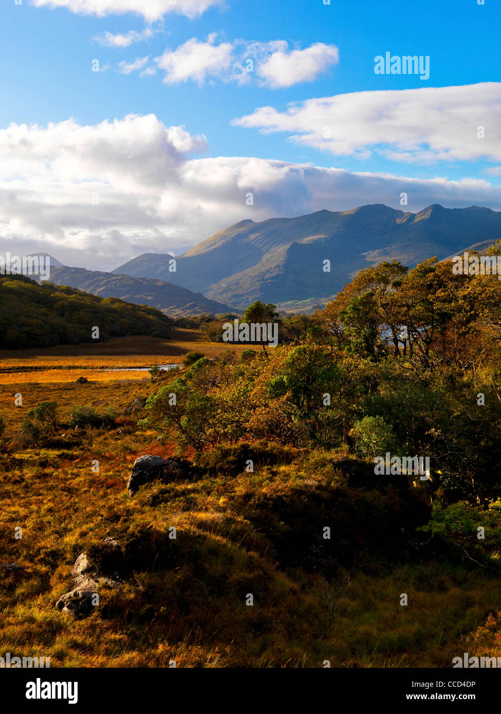 Macgillycudy's Reeks from the Upper Loughs, Killarney Co. Kerry - Stock Image