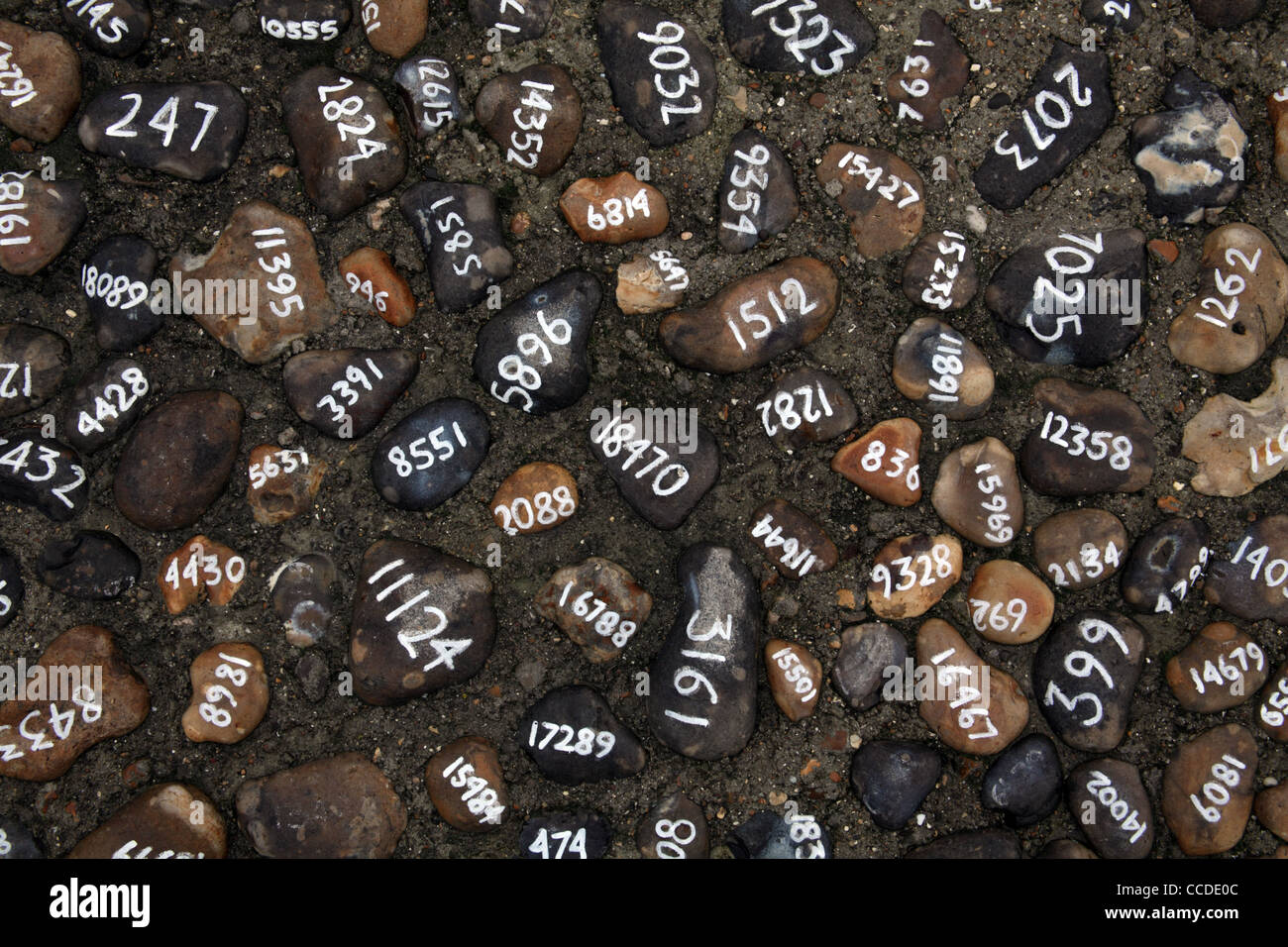 Installation by Mark Wallinger in Folkestone, Kent; entitled 'Folk Stones' - Stock Image