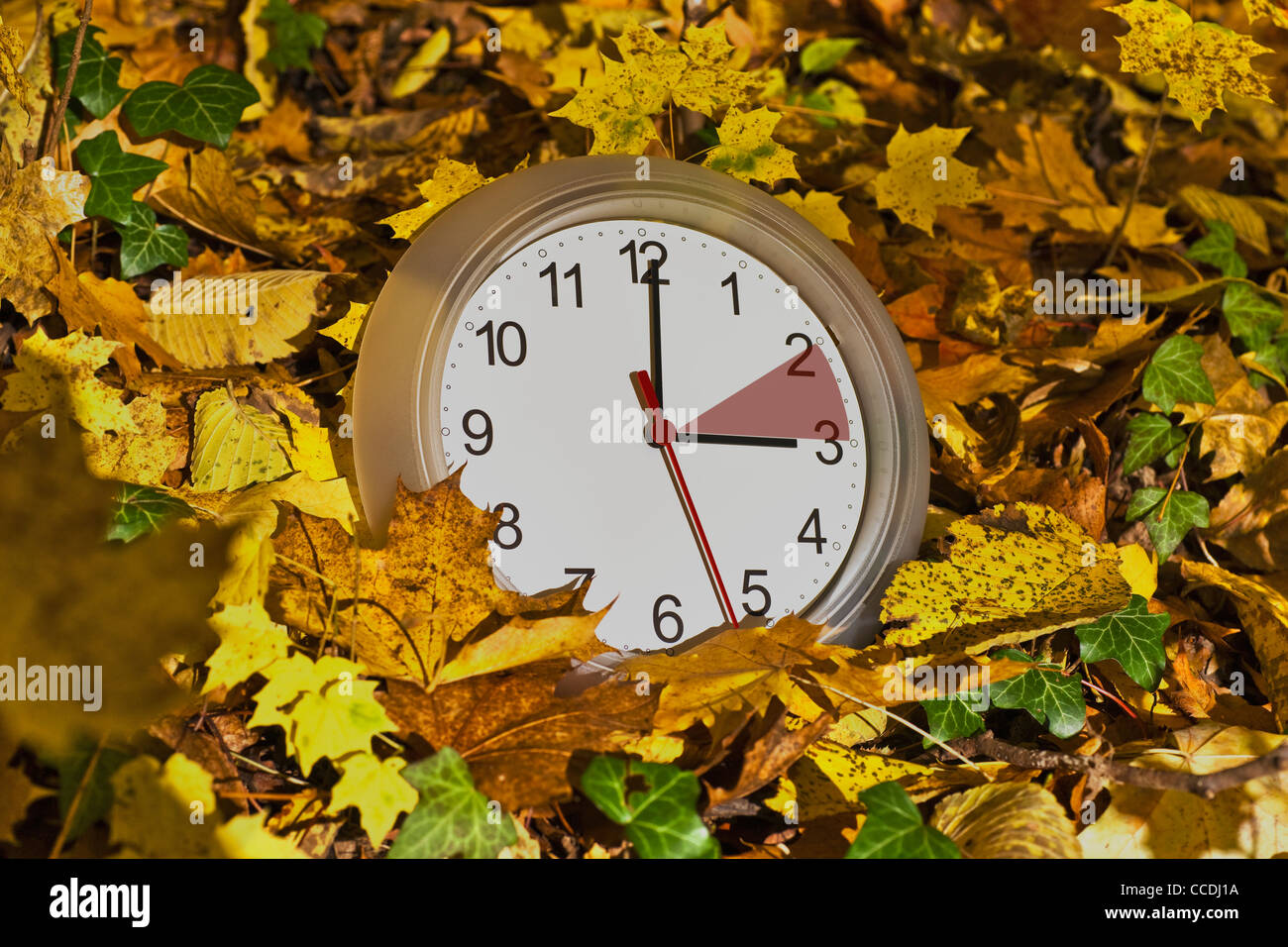 A wall clock in the colorful leaves. The clock face has a red marker between two and three. Stock Photo