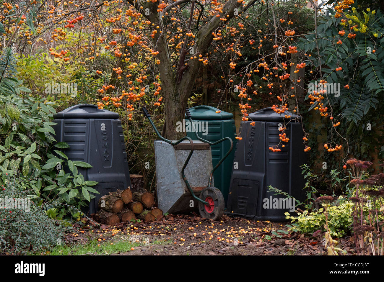 Garden compost bins under a crab apple tree with logs and a wheel barrow. A typical English country garden scene. - Stock Image