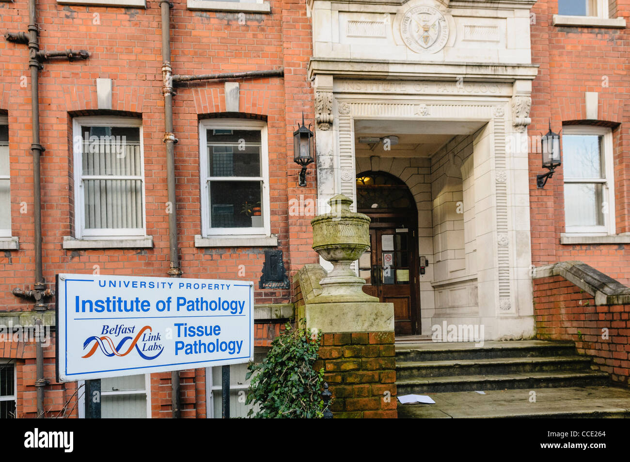 Institute of Pathology at Royal Victoria Hospital, Belfast - Stock Image