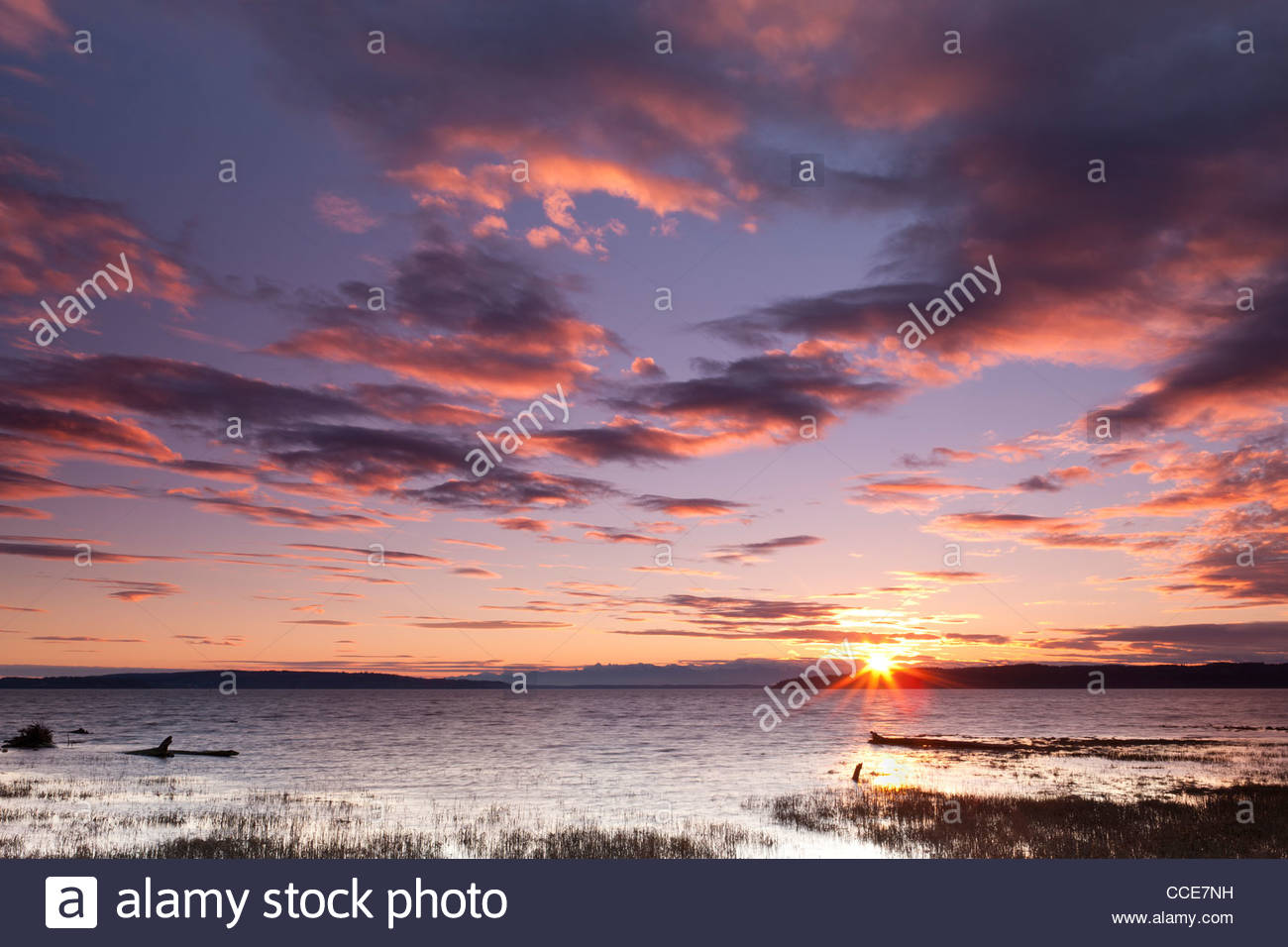 The sun sets behind the Olympic Mountains, coloring the sky above Skagit Bay in this view from Fir Island, Washington. - Stock Image