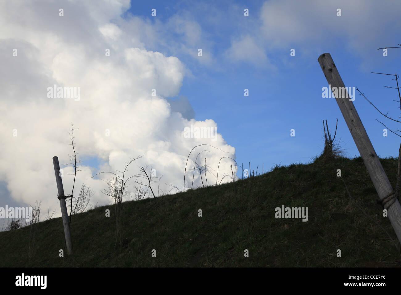 Hügel,Natur,Sträucher,bewachsen,Winter,Sonnenschein,Schatten,Qualm,Kraftwerk,Bergkuppe,künstlich - Stock Image