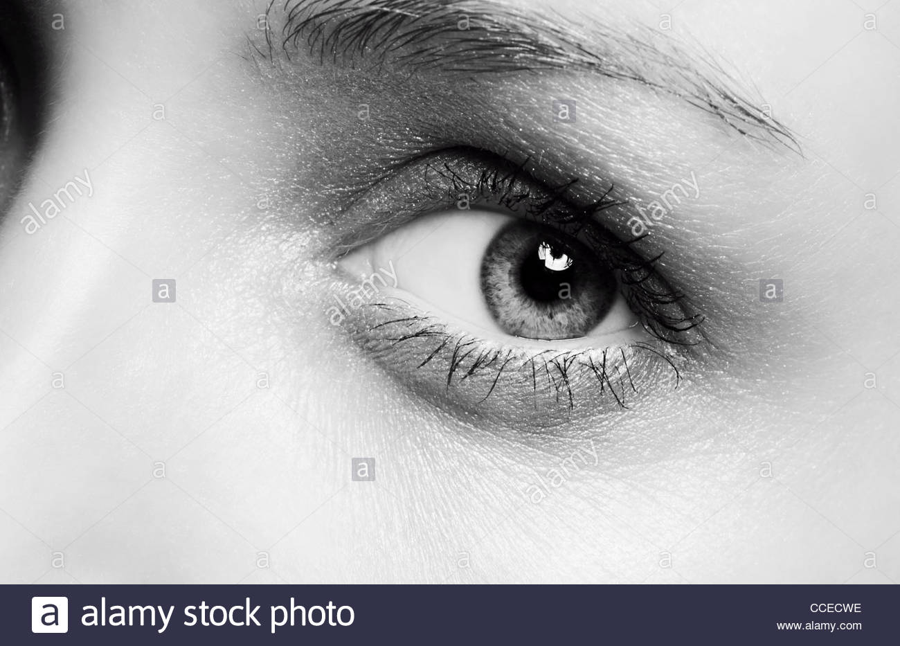 Eye - Stock Image