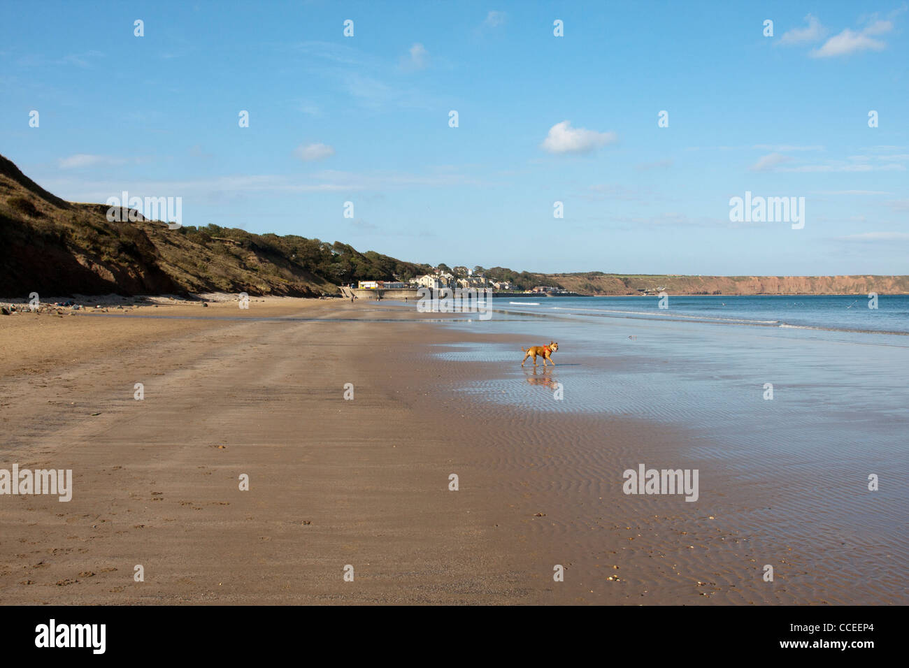 Megan at Filey Beach - Stock Image