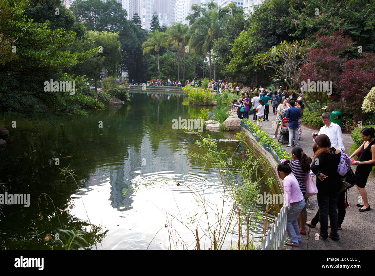 artificial lake in hong kong park central hksar china asia - Stock Image