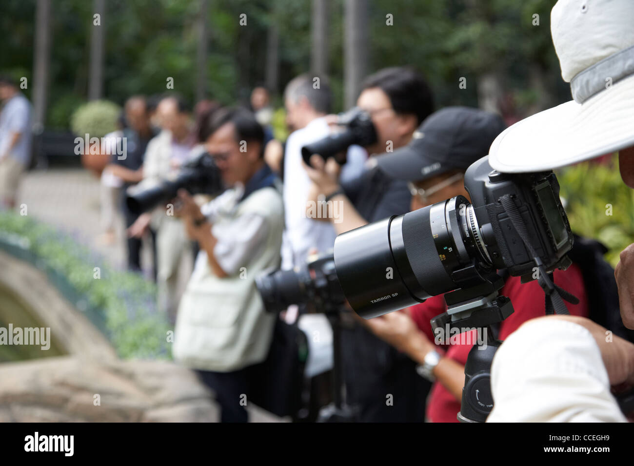 row of chinese photographers using telephoto lenses in hong kong park central hksar china asia - Stock Image