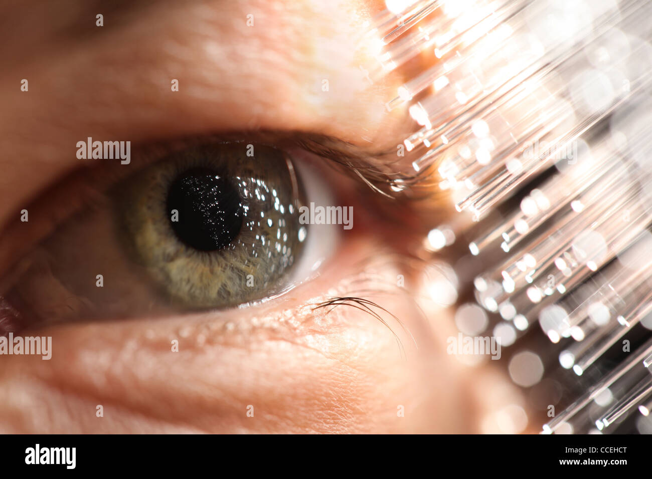 Fiber optics amd eye technology - Stock Image