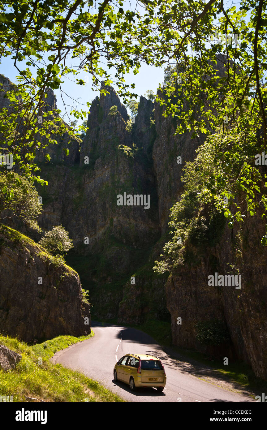 Over hanging trees stock photos over hanging trees stock - Cheddar gorge hotels with swimming pools ...