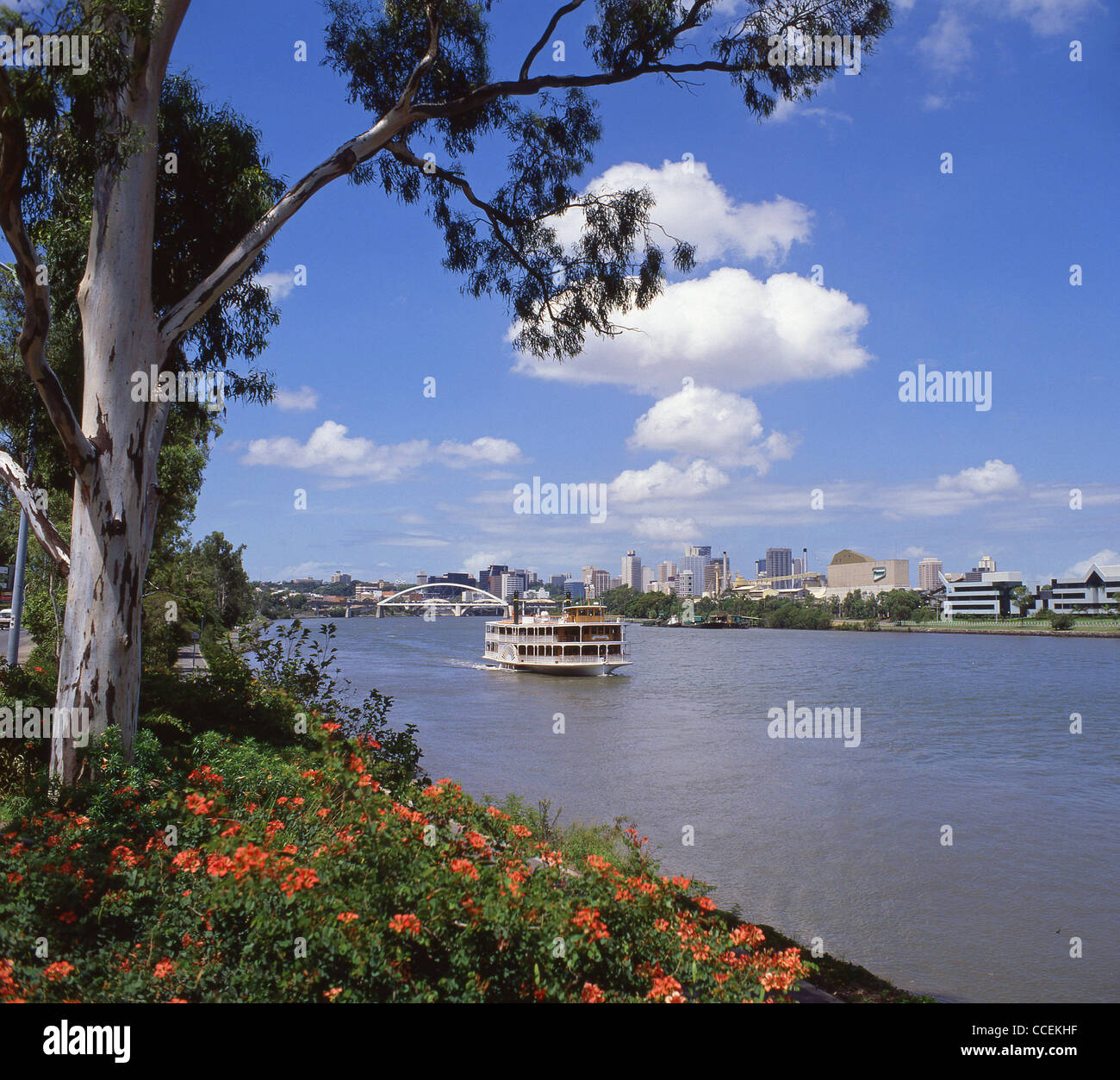 Paddle steamer riverboat on Brisbane River, Brisbane, Queensland, Australia - Stock Image