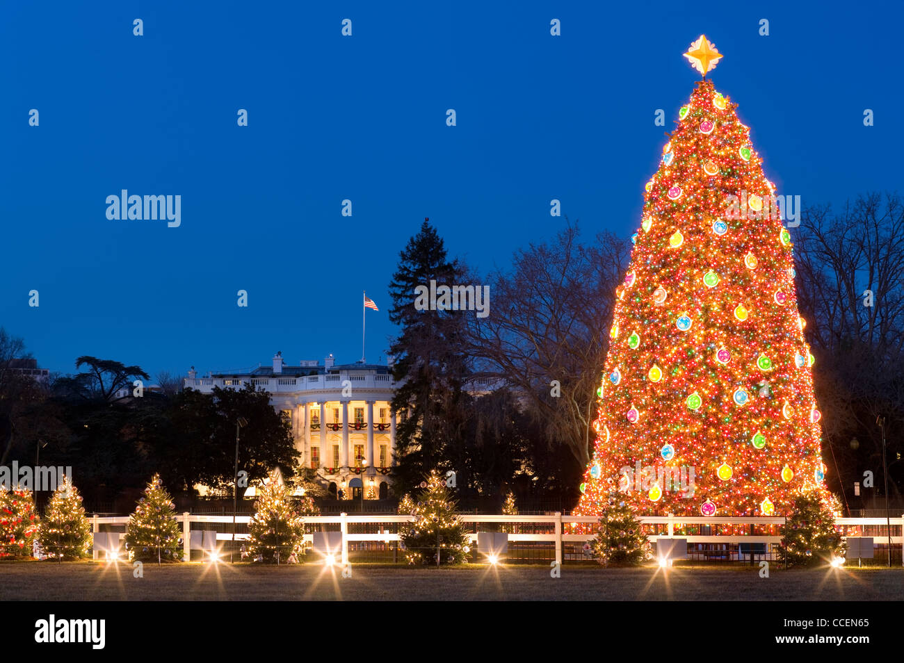 Festive lights of the National Christmas Tree and the Pageant of Peace in front of the White House Washington DC - Stock Image