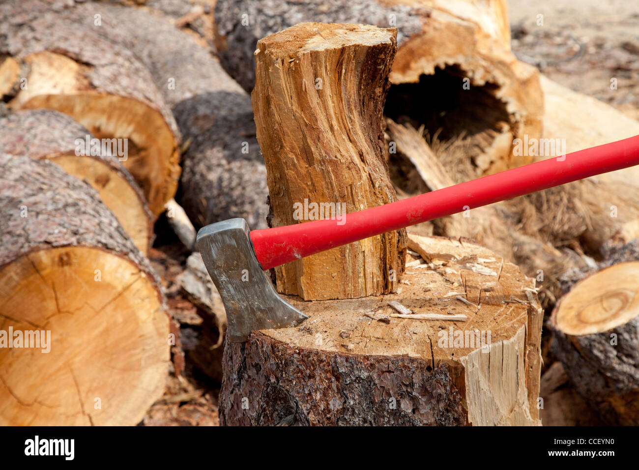 An axe wedged into a tree stump - Stock Image