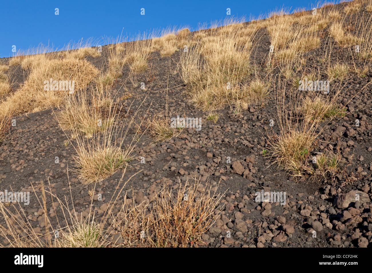 Lava field at Etna, Sicily, Italy - Stock Image