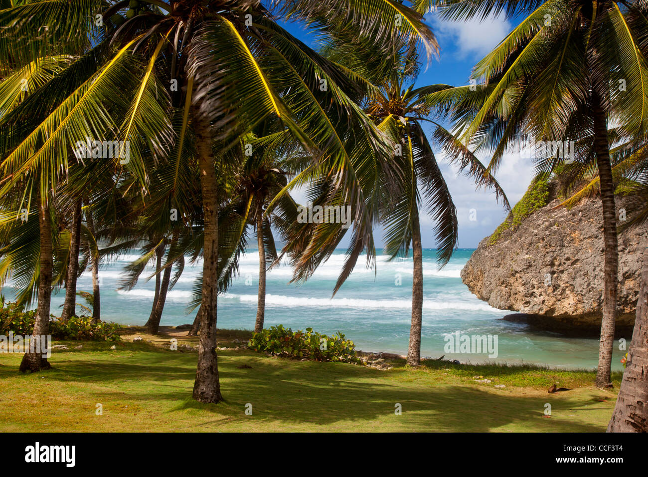 Barbados Bathsheba Stock Photos & Barbados Bathsheba Stock Images ...