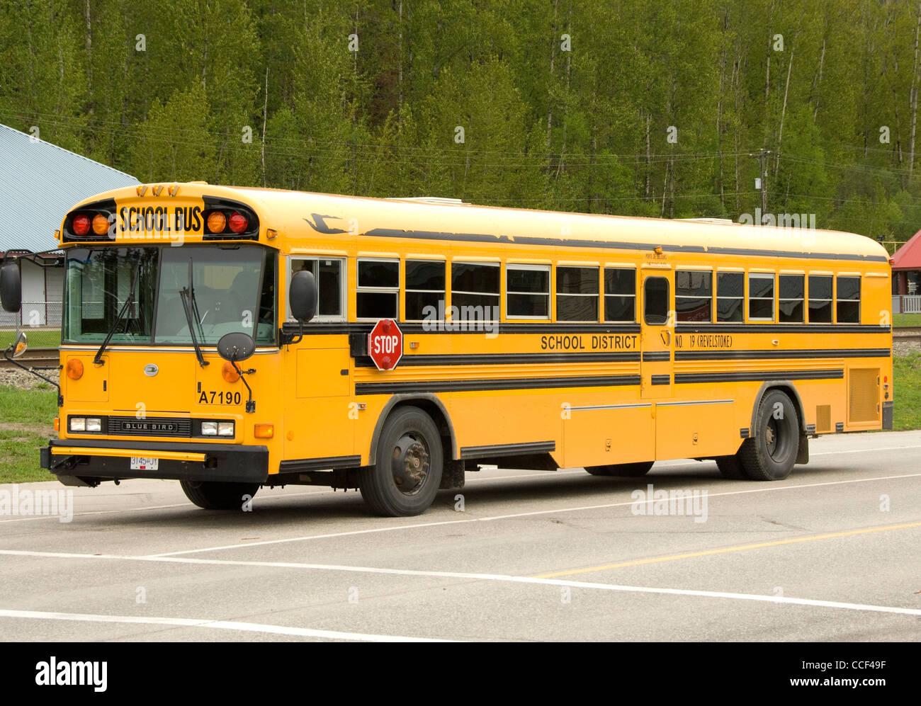Thomas Built Buses >> Canadian School Bus, Revelstoke, British Columbia, Canada Stock Photo: 42129291 - Alamy
