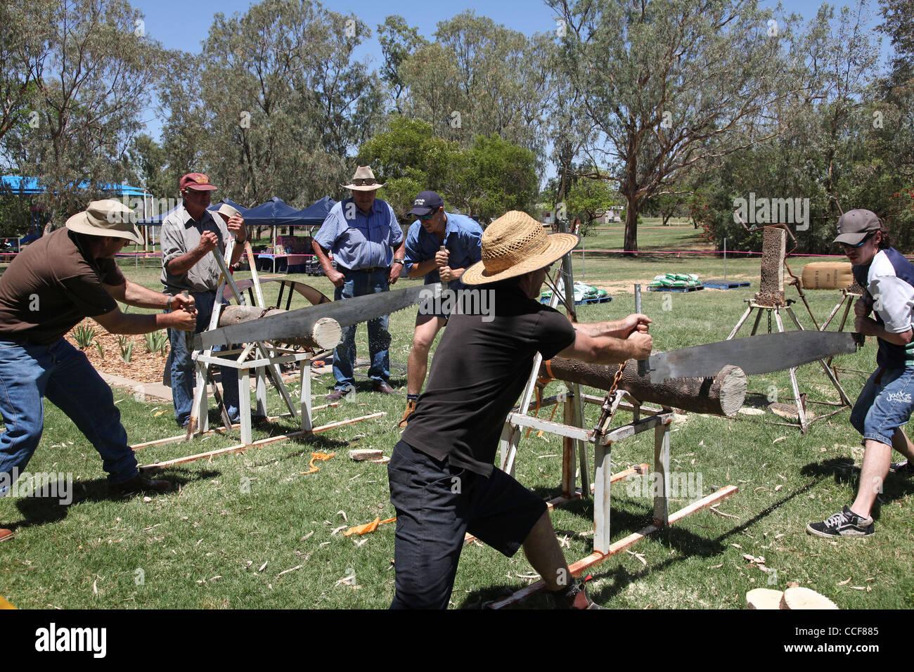 Stockman's Challenge, cross saw event, Cunnamulla Fella Festival, Cunnamulla, Queensland, Australia - Stock Image