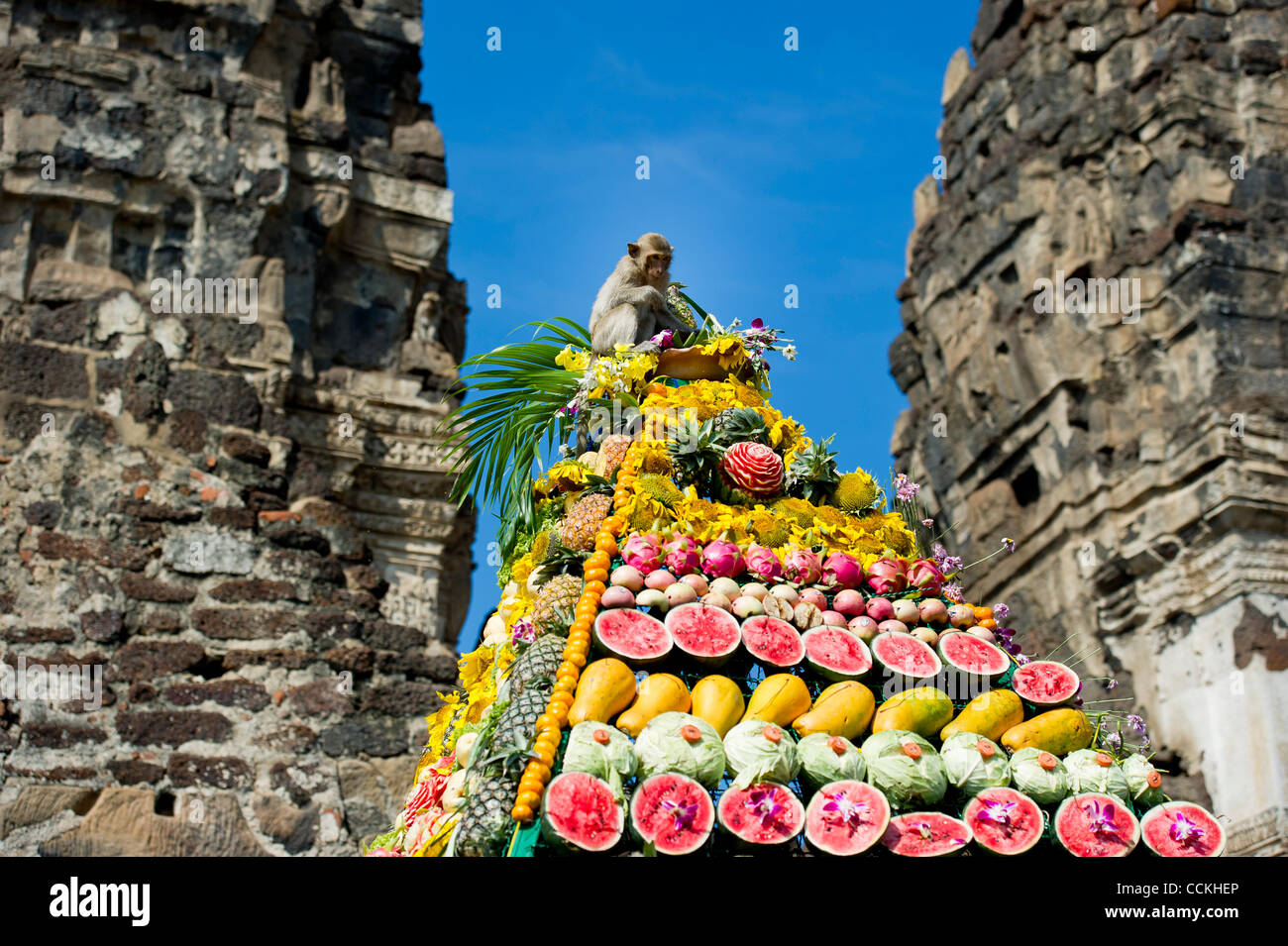 Nov. 28, 2010 - Lopburi, Thailand - A monkey sits on top of a pyramid made of fruit during the annual 'monkey buffet Stock Photo
