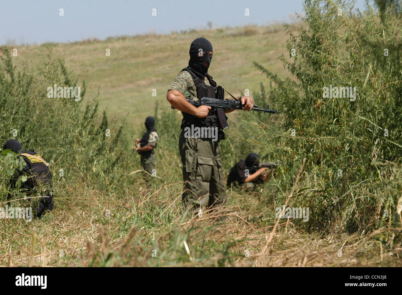 Anti-drug operation by special chechen forces. - Stock Image