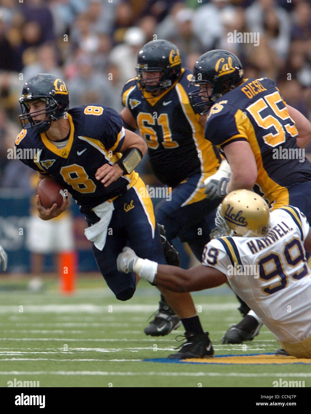 Cal Quarterback Aaron Rodgers Rushes For Some Of His 22 Yards During Stock Photo Alamy