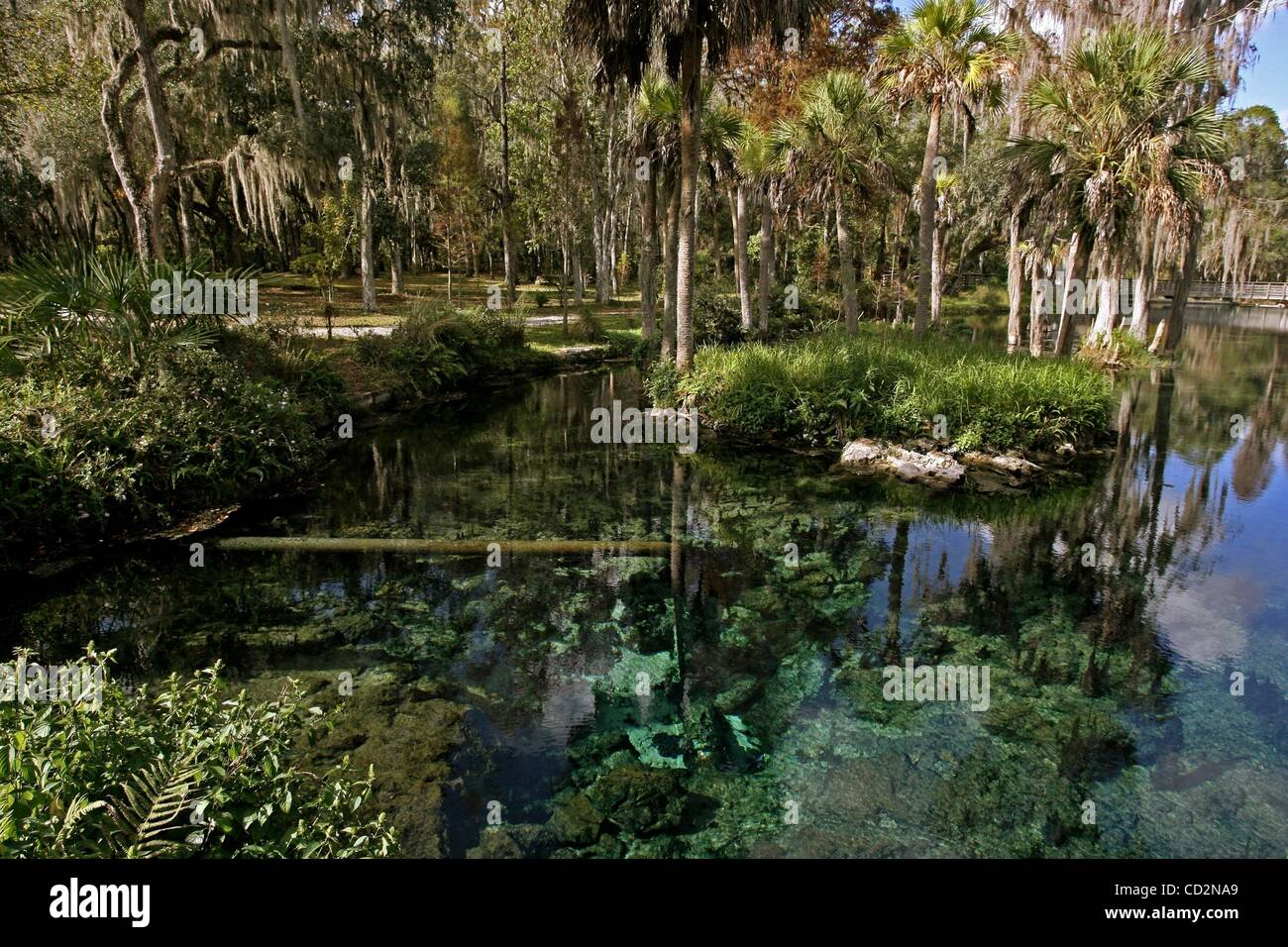 Mar 14, 2008 -Zephyrhills, Florida, USA - A pipe emerges from the opening of Crystal Spring, which is the source - Stock Image