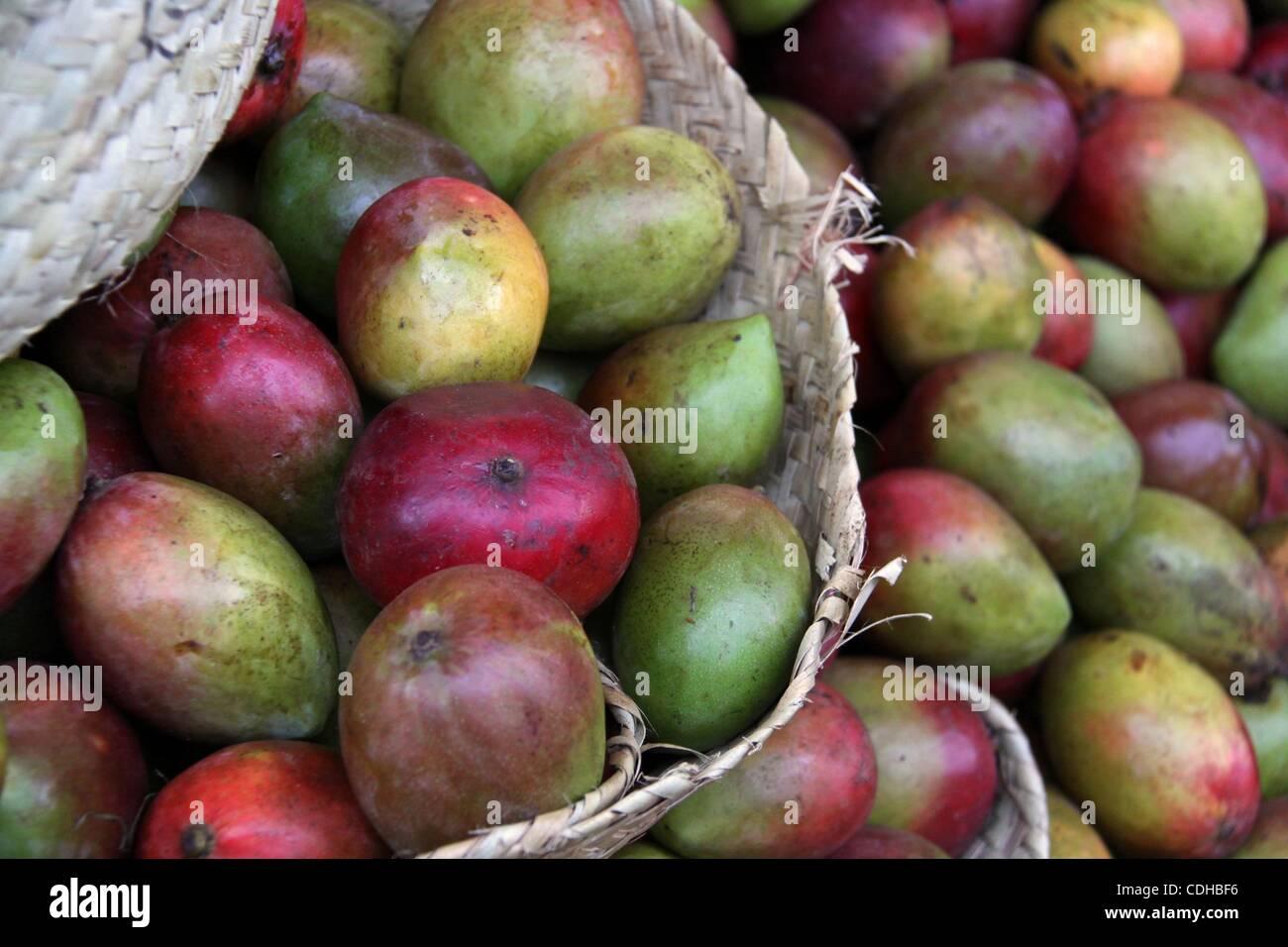 Feb 02, 2011 - Nairobi, Kenya - Mangos at Marikiti Market, wholesale