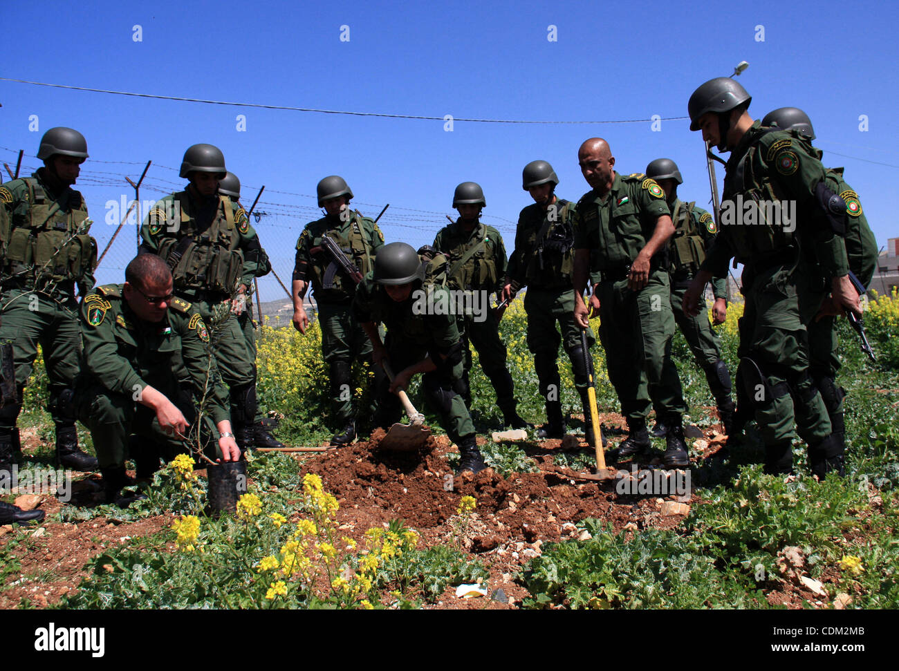 Palestinian security officers plant trees during an event marking Land Day, near the West Bank city of Nablus, Wednesday, - Stock Image