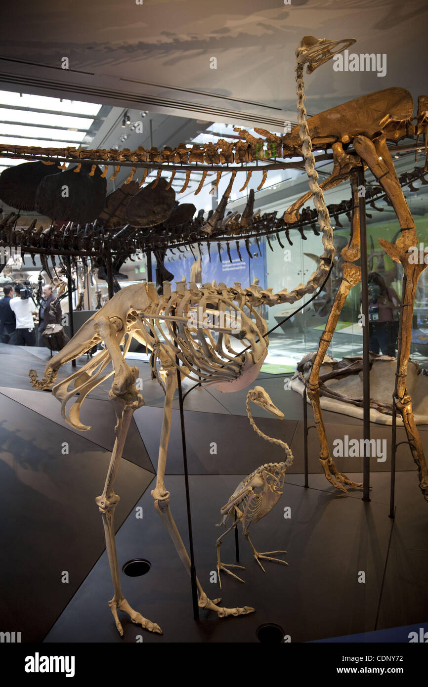 Los Angeles Museum Of Science And Natural History